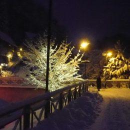 Kurort Rathen im Winter bei Nacht mit Beleuchtung eines Weges und Bäumen