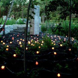 Ein Teil des Plattenbaumuseums Betonzeitschiene mit einem Garten voll Glühbirnen.
